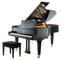 piano allemand Seiler professional 208 d'occasion loudun poitiers chatellerault vienne 86 saumur chinon